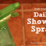 DIY Daily Shower Cleaner
