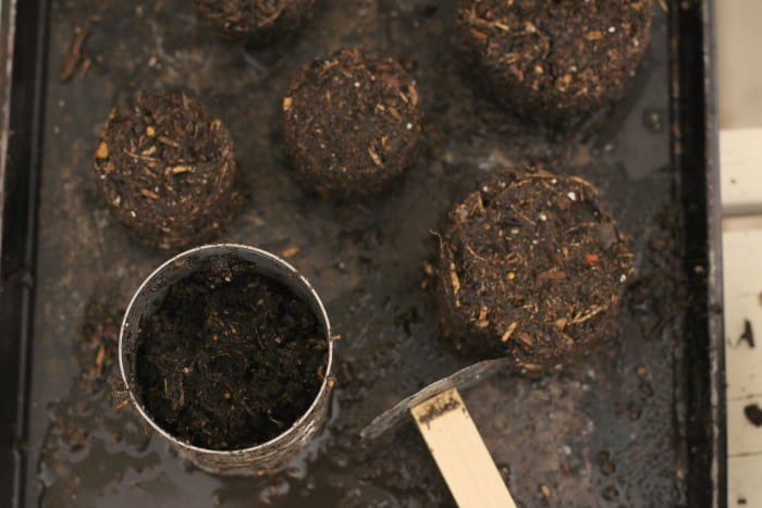 how to make soil blocks for starting seeds