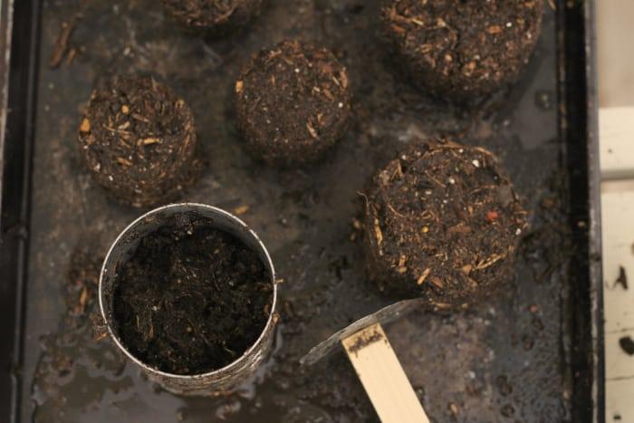 how to make soil blocks for starting seeds