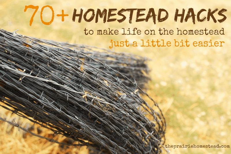 70+ Homestead Hacks