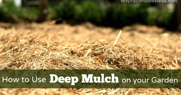 How to Use the Deep-Mulching Method in Your Garden