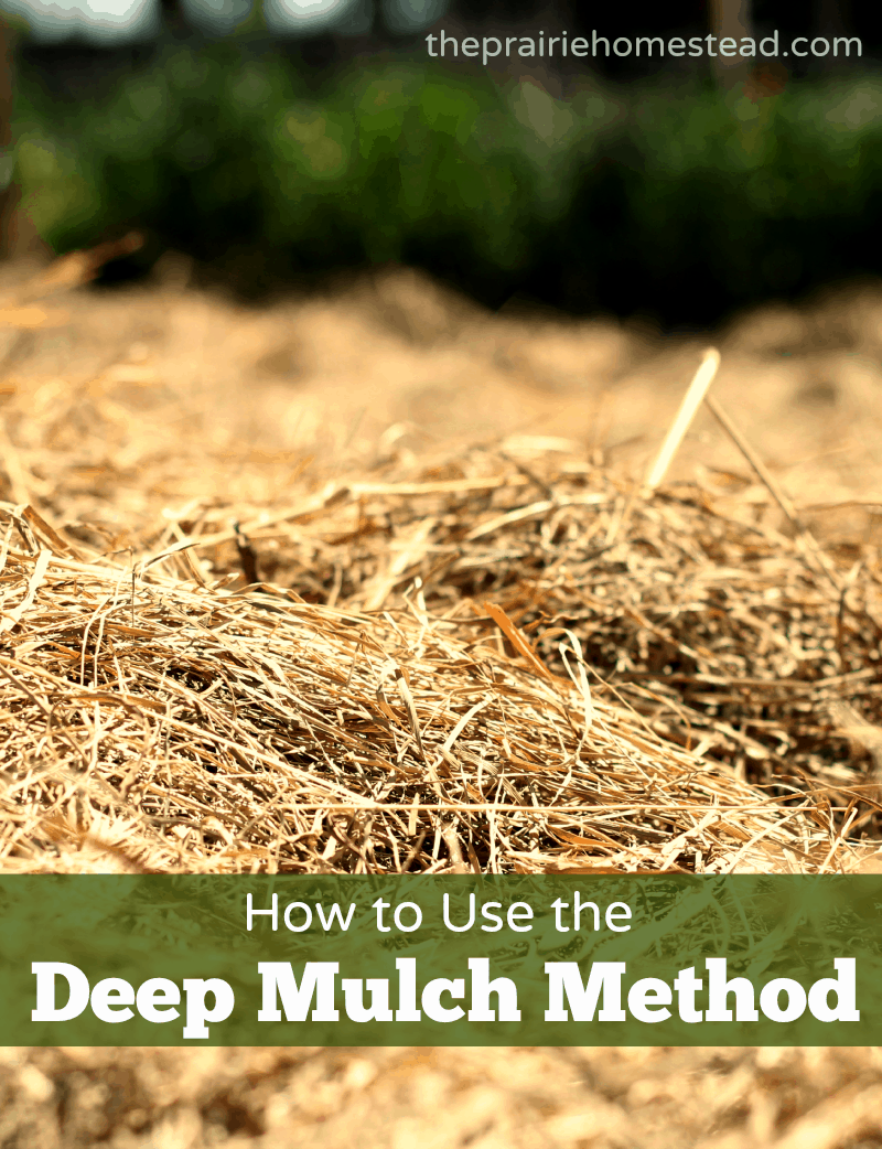 How to Use Deep Mulch on Your Garden