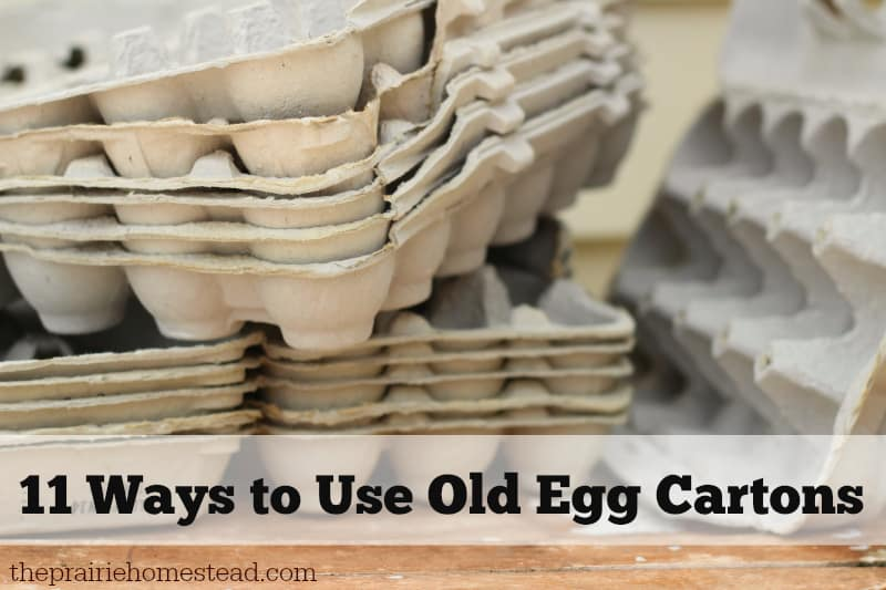 ways to use egg cartons