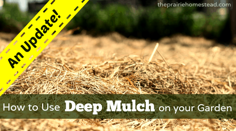 deep mulch