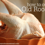 How to Cook an Old Rooster (or Hen!)