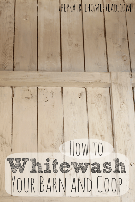 How to Whitewash Your Barn and Coop: how to make and apply whitewash