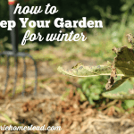 Clean Up Your Fall Garden and Give it a Boost for Next Year!