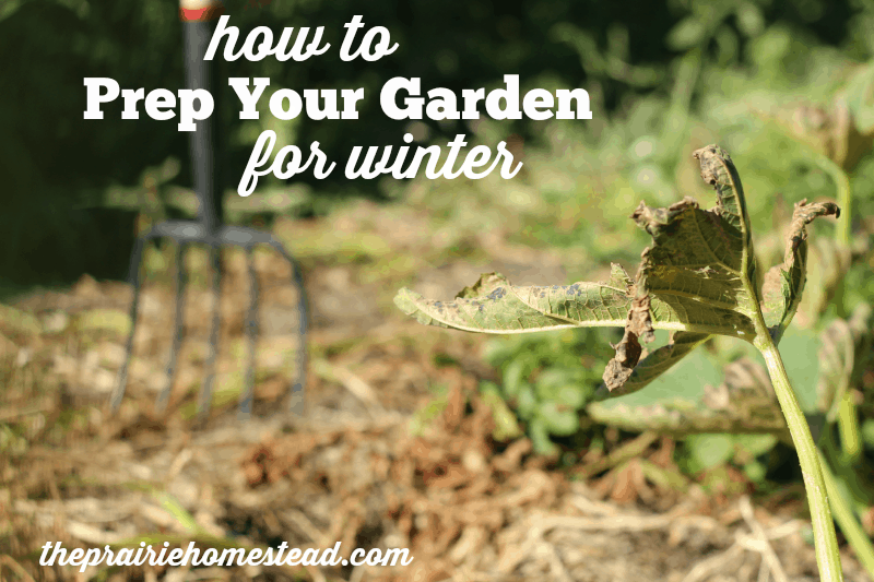 how to prep garden for winter