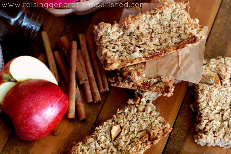 Enjoying The Apple Harvest :: 100+ Apple Recipes!