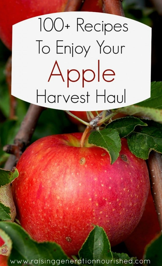 100+ apple recipes
