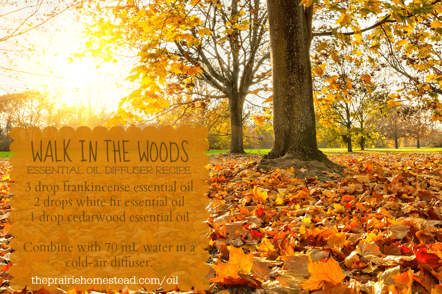 autumn essential oil diffuser recipe