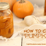 Canning Pumpkin – The Easy Way