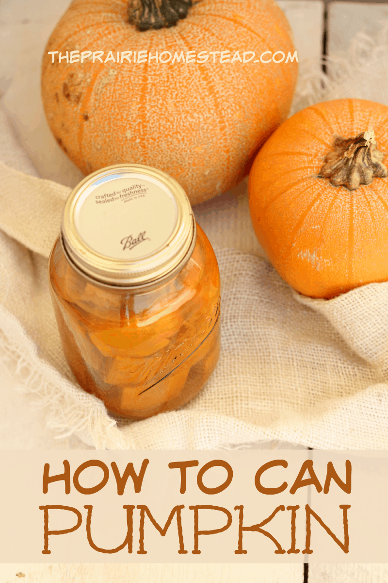 Canning pumpkin -- it's possible! You can the cubes and then mash when you are needing puree. Easy peasy.