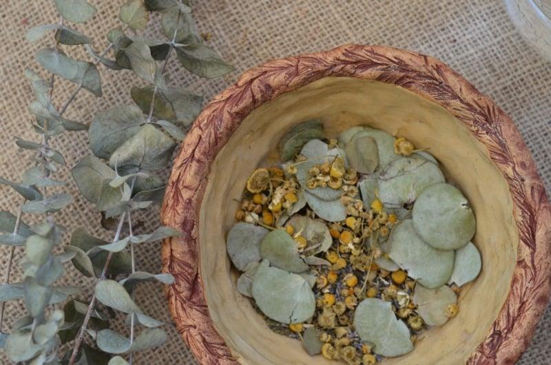 eucalyptus chamomile steam & Home Remedy for Congestion | The Prairie Homestead
