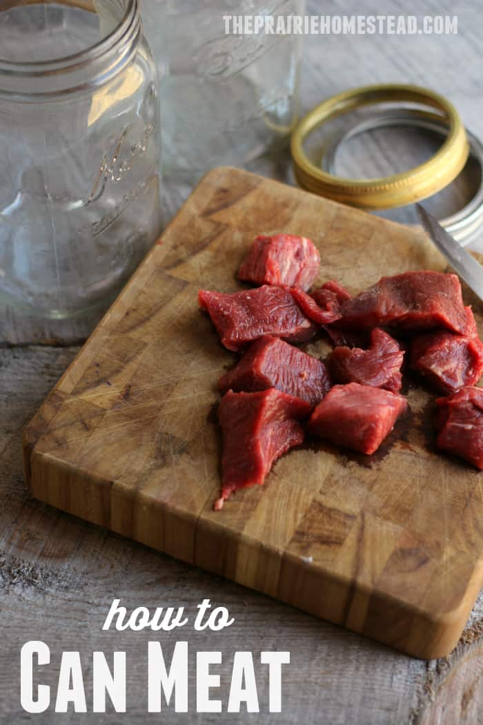 how to can beef, venison, or elk with a pressure canner for fork-tender meat!