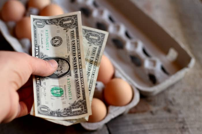 how to make money from homesteading