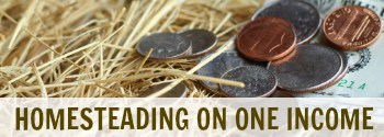 Homesteading on One Income