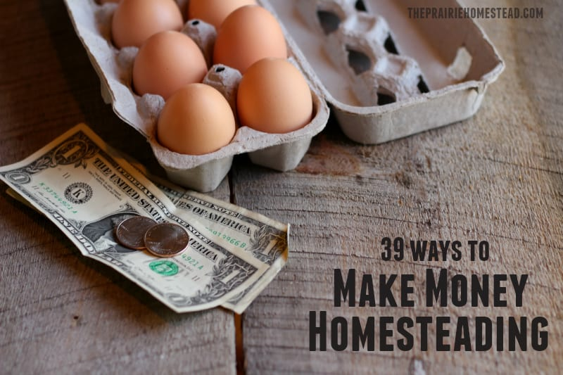 how to make money while homesteading