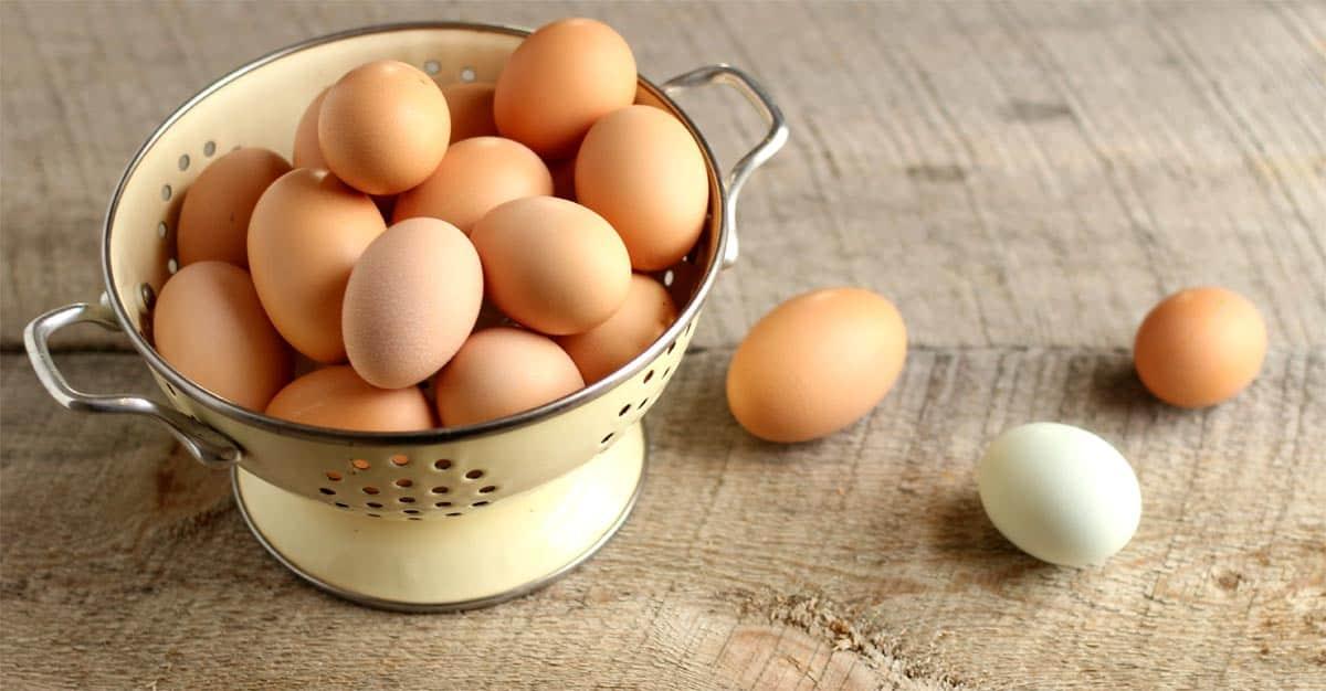 eggs-home