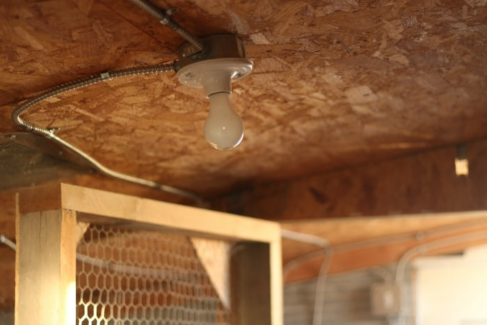 supplemental light in winter chicken coop