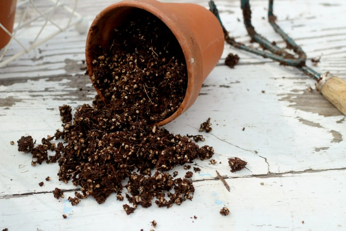 potting-soil-recipe