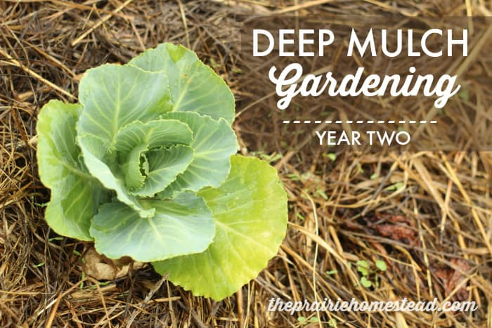 deep mulch garden method