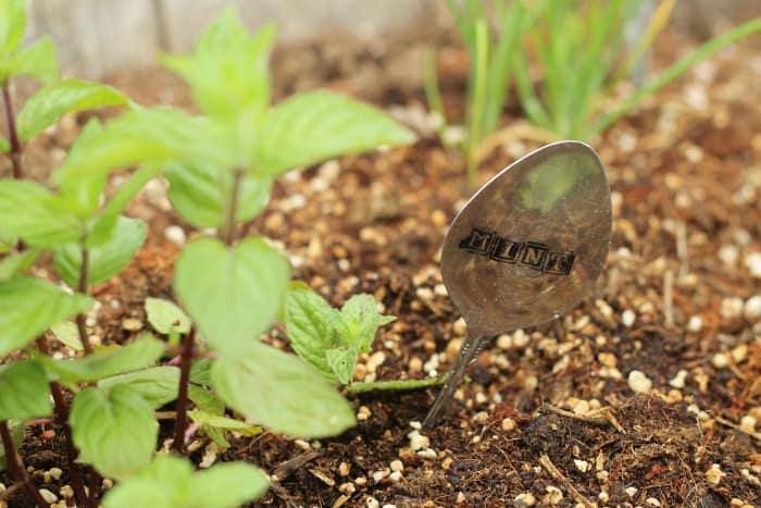 diy spoon garden marker