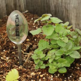 diy spoon garden markers