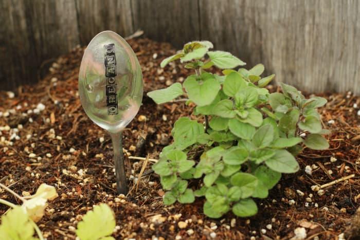 diy spoon garden markers
