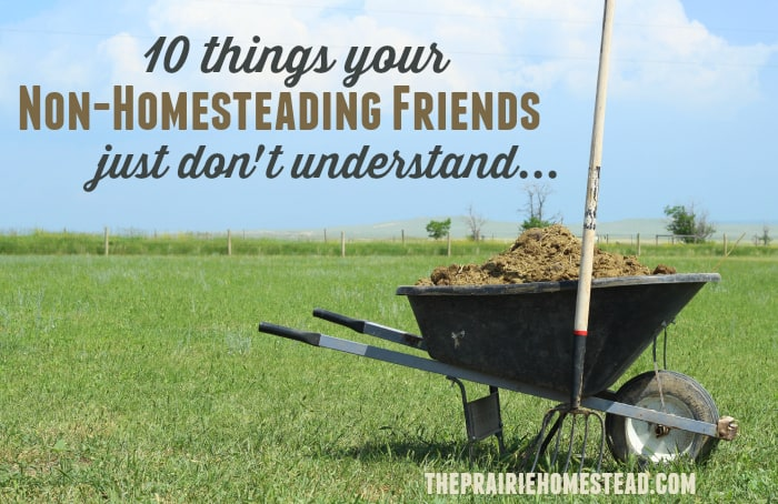 10 Things Your Non-Homesteading Friends Just Don't Understand