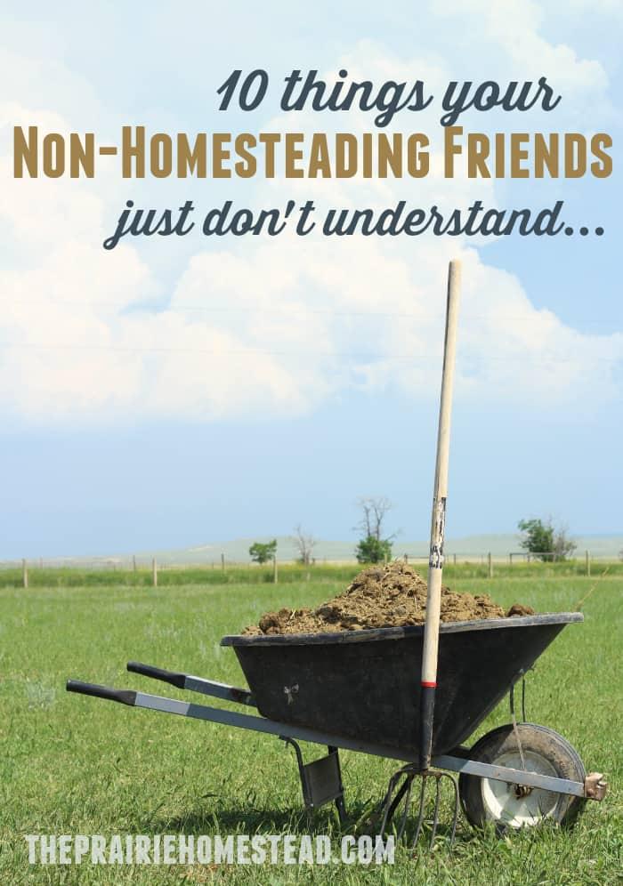 non-homesteading-friends-3
