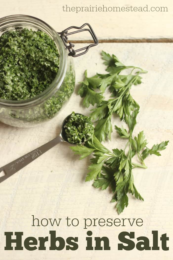homemade herb salt recipe