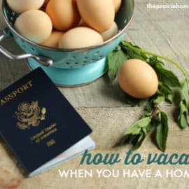how to take a vacation when you have a homestead