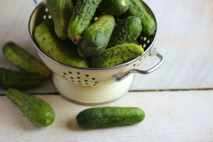 pickling cucumbers in a colander