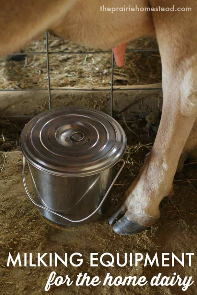 cheap milking equipment for home dairy