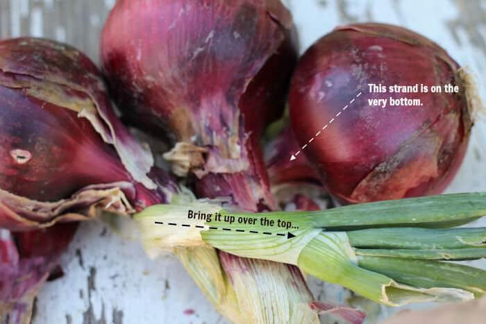 braid-onions-2