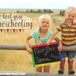 Our First Year of Homeschooling