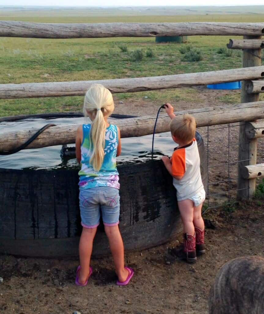 Our First Year of Homeschooling - science experiment | The Prairie Homestead