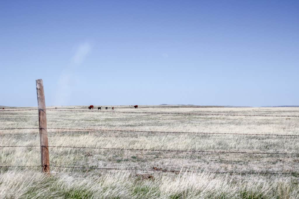 Homesteading in Wyoming • The Prairie Homestead