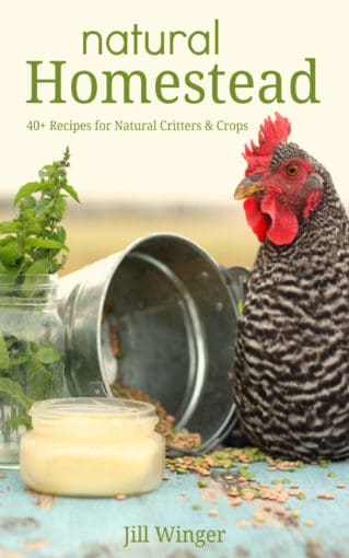 Natural Homestead book cover