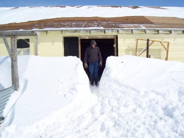 barn in snow drift