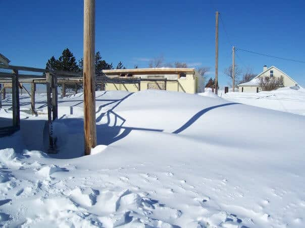 wyoming blizzard aftermath