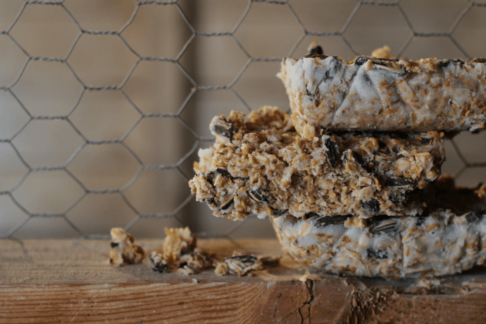 how to make suet cakes for chickens