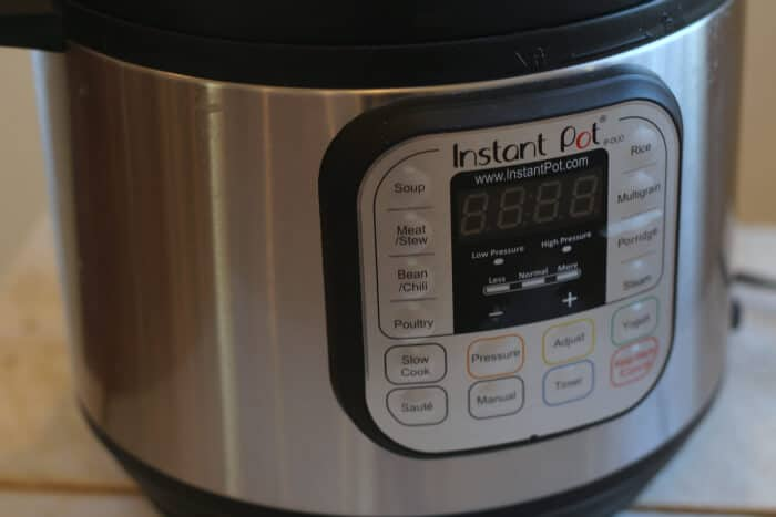instant pot recipe ideas