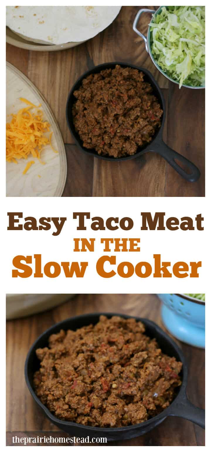 2-Ingredient Slow Cooker Salsa Chicken