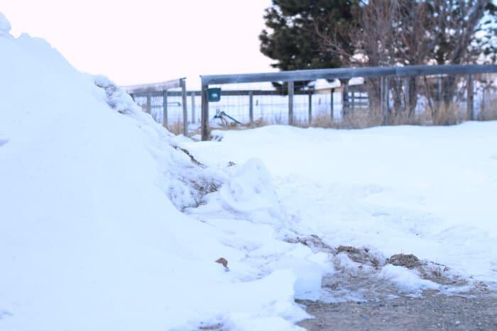 winter-homesteading-1