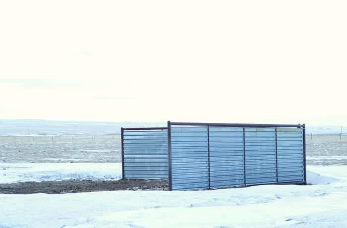steel windbreak in wyoming for cattle