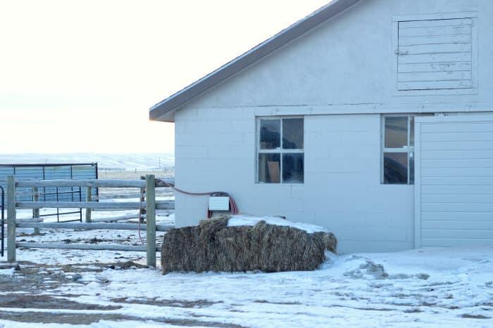 Managing Livestock in the Winter: wyoming barn in snow