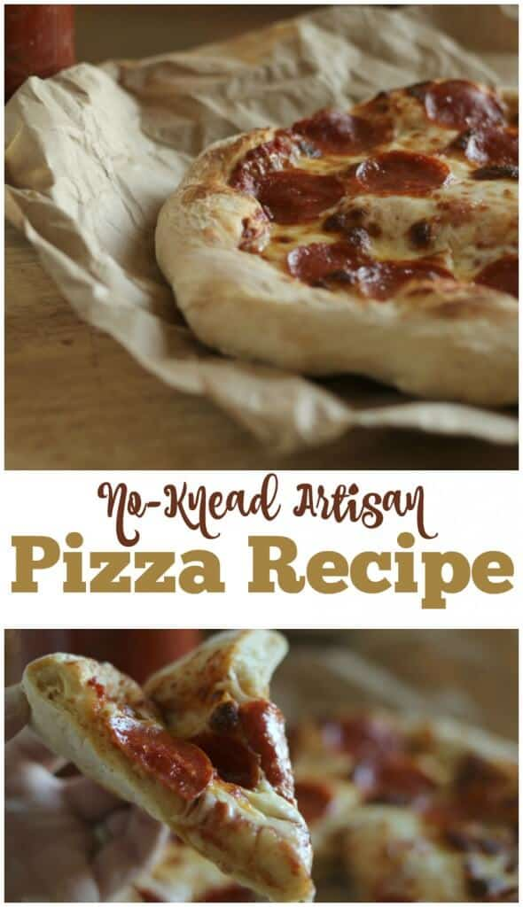 No-Knead Pizza Dough Recipe — Dishmaps