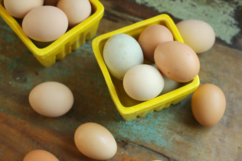 ways to use lots of extra eggs